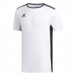 CAMISETA SS STRIPE NARANJA Multicolor